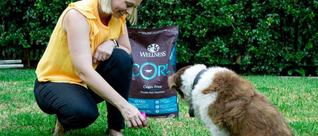 dog eating Wellness CORE dog food