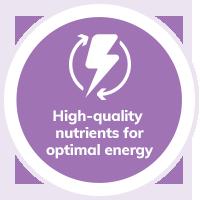 dog-nutrients-energy